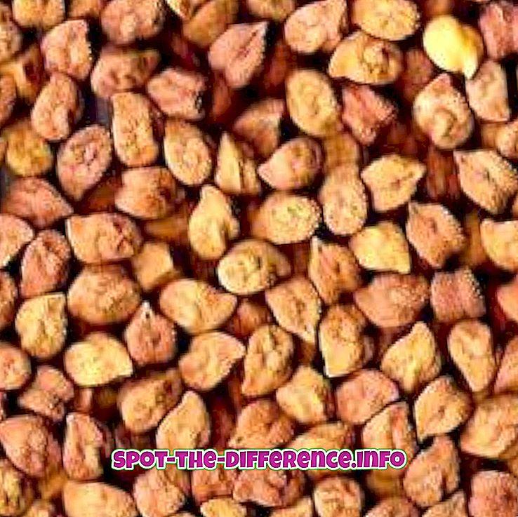 Razlika između sjemena po Gramu i sjemenki graha