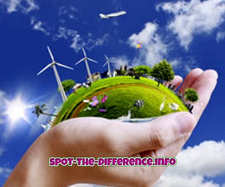 Razlika između okoliša i ekosustava
