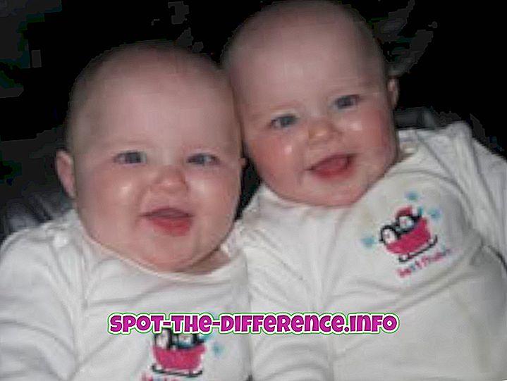 populaarsed võrdlused: Erinevus Cute ja Gorgeous vahel
