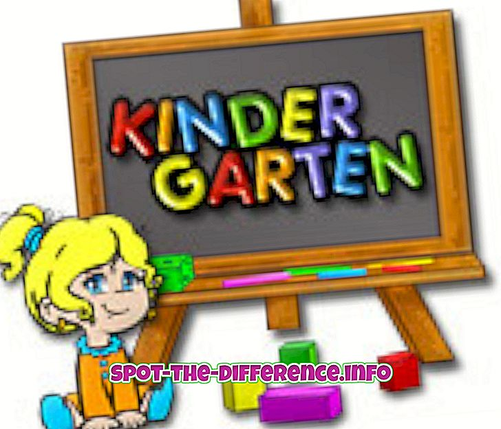 Différence entre la maternelle et l'école primaire