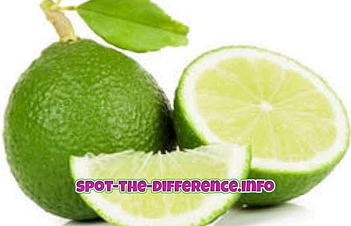 популярні порівняння: Різниця між вапном і лимоном