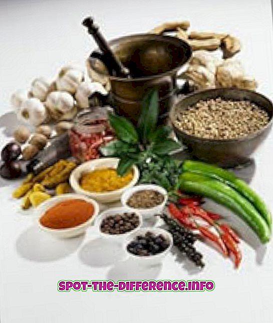 popüler karşılaştırmalar: Ayurveda ve Homeopati Arasındaki Fark