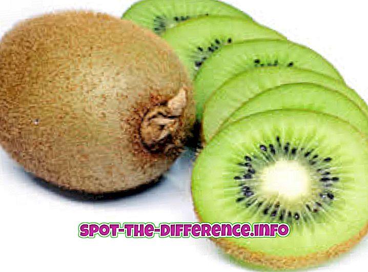 Unterschied zwischen Kiwi und Goldener Kiwi