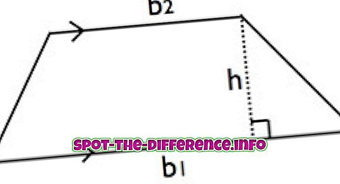 Rozdíl mezi trapézou a paralelogramem