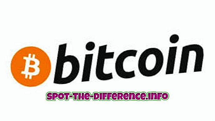 популярные сравнения: Разница между биткойнами и дожекойнами