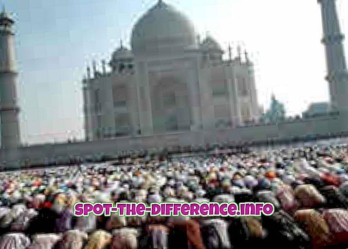 Moslem Muslim Unterschied