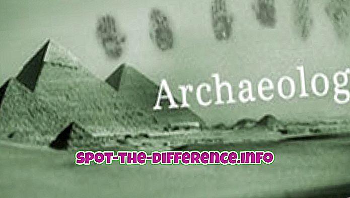Verschil tussen archeologie en antropologie