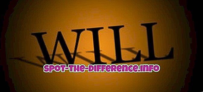 Rozdiel medzi Will a Will