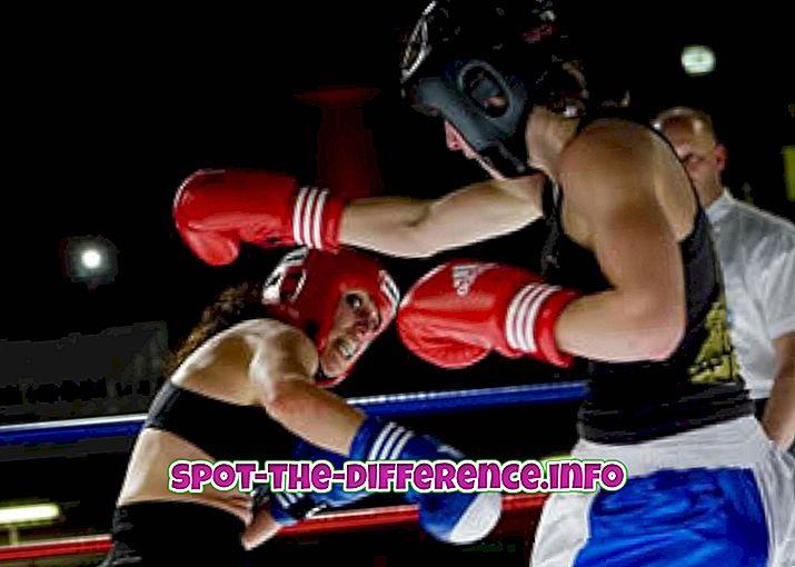 Forskel mellem Kickboxing og Savate