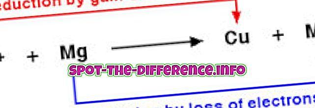 populære sammenligninger: Forskel mellem oxidation og reduktion