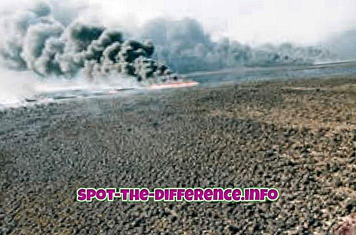 beliebte Vergleiche: Unterschied zwischen Bodenverschmutzung und Bodenverschmutzung