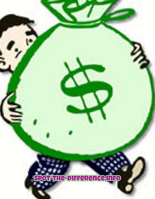 Forskel mellem indtægter og indtægter