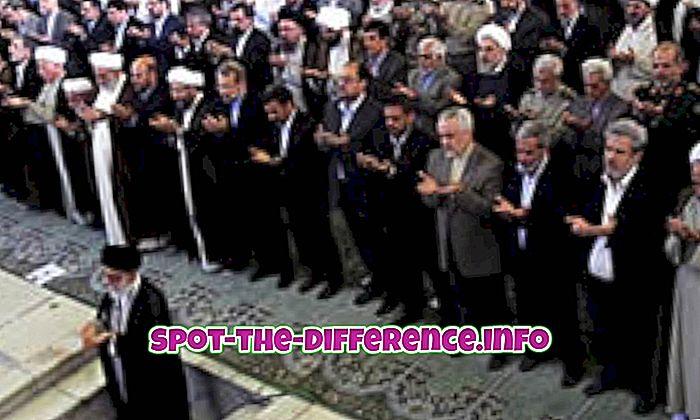 Erinevus Shia ja Ismaili vahel