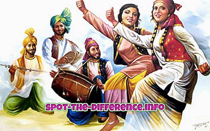 tautas salīdzinājumi: Starpība starp Punjabi un Gudžarati