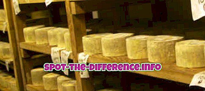 Rozdíl mezi skladováním a skladováním