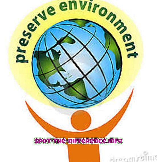 대중적 비교: 보존과 보존의 차이