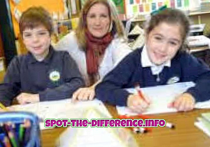 人気の比較: 幼稚園と小学校の違い