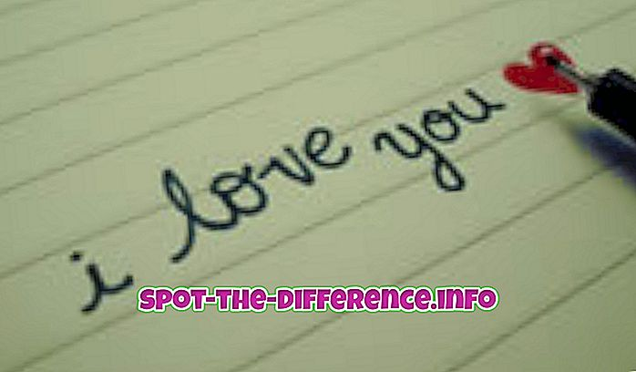 Разлика между любовта и любовта