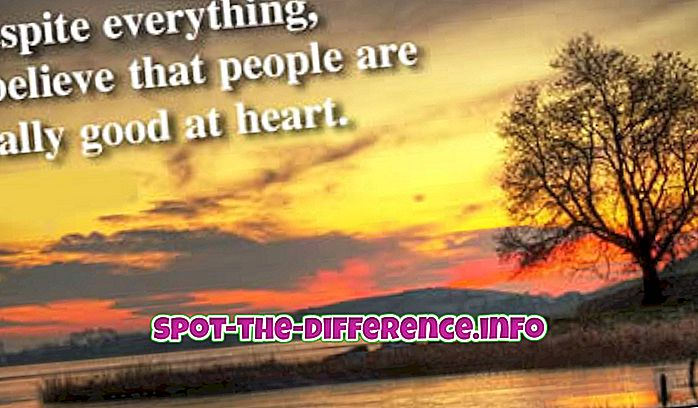 populaarsed võrdlused: Erinevus Vaatamata ja Inspiteeritud