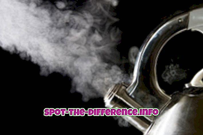 популарна поређења: Разлика између паре и дима