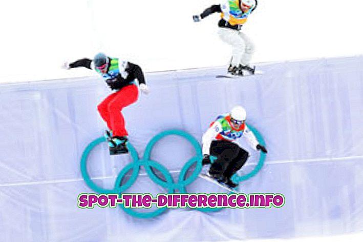 Razlika između zimskih olimpijskih igara i ljetnih olimpijskih igara