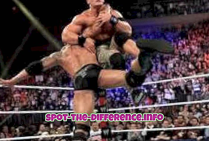 populære sammenligninger: Forskjellen mellom WWF og WWE wrestling