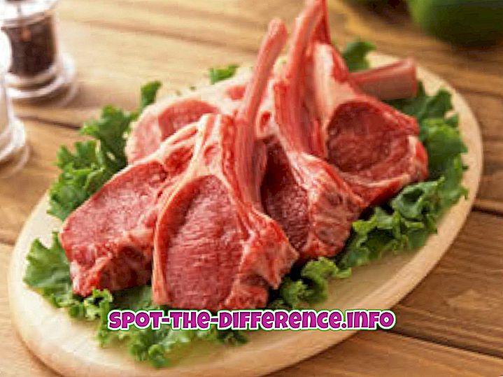 perbandingan populer: Perbedaan antara Daging dan Ikan