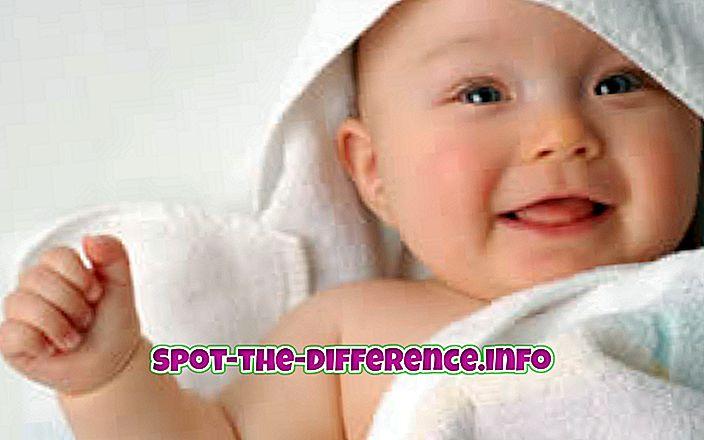 beliebte Vergleiche: Unterschied zwischen Baby und Kind