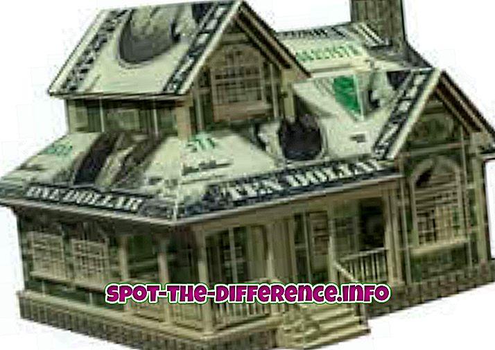 confronti popolari: Differenza tra denaro e ricchezza