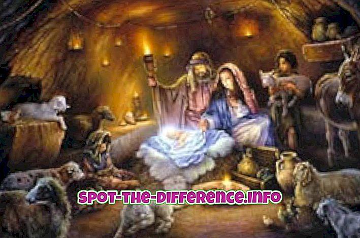 Forskel mellem Creche og Nativity