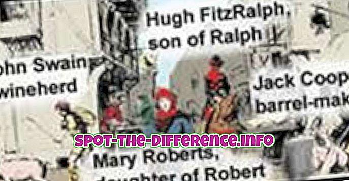 beliebte Vergleiche: Unterschied zwischen Nachname und Titel