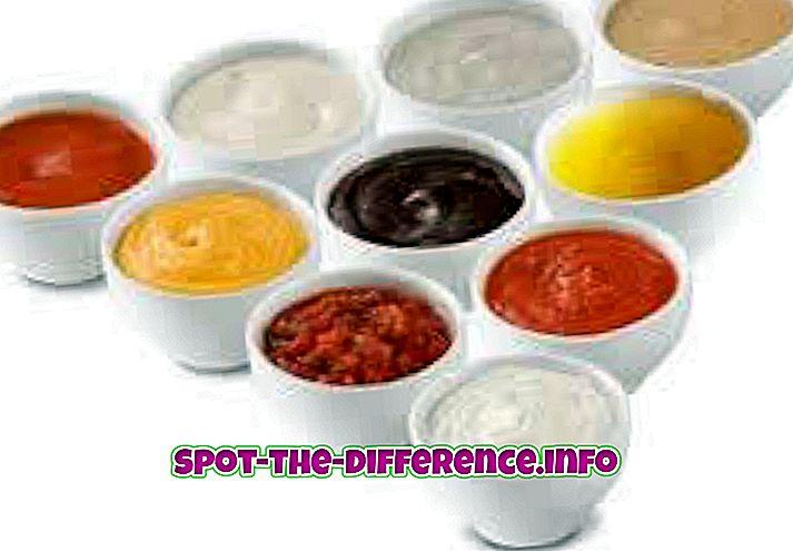 Rozdiel medzi omáčkou a kečupom