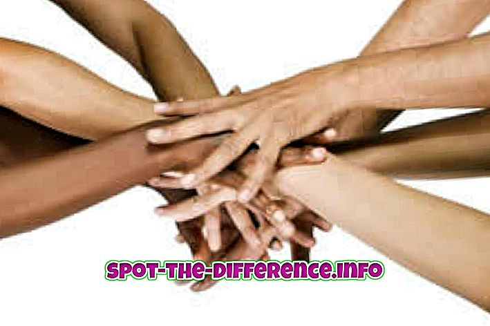 populaarsed võrdlused: Erinevus rahvuse ja kultuuri vahel