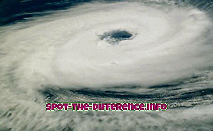 beliebte Vergleiche: Unterschied zwischen Hurrikan und Blizzard