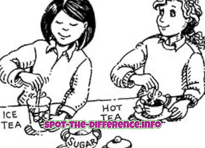 populaarsed võrdlused: Homogeensete ja heterogeensete erinevuste erinevus