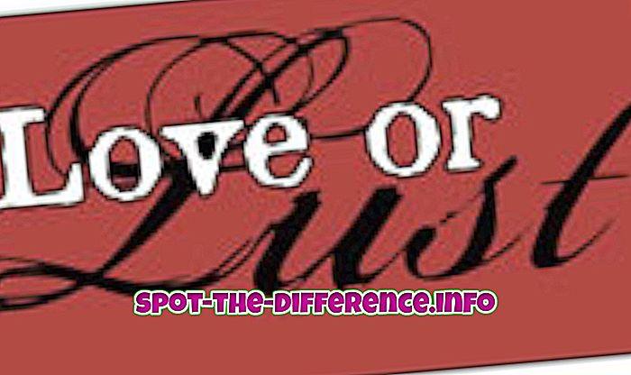 populære sammenligninger: Forskel mellem kærlighed og lyst