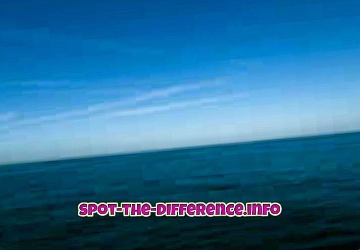 Різниця між океаном і бухтою