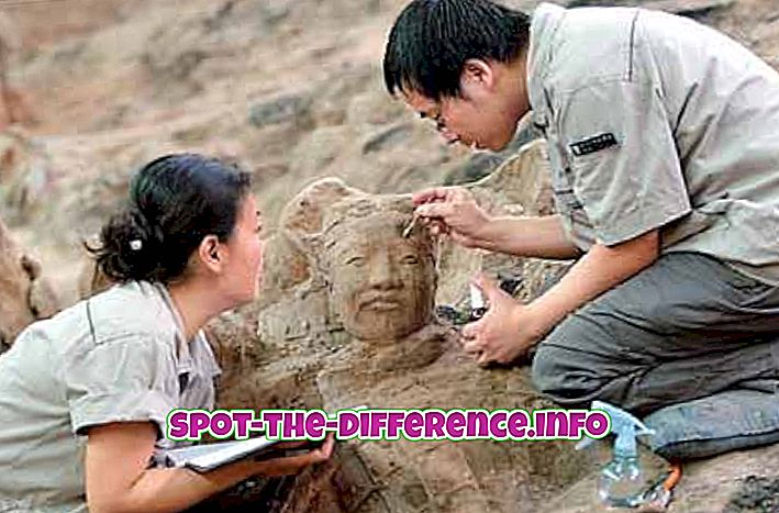 suosittuja vertailuja: Arkeologin ja historioitsijan välinen ero