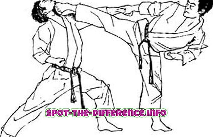 Forskel mellem karate og judo