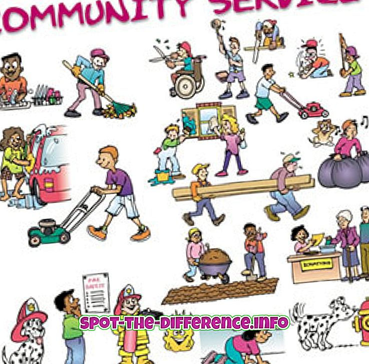 Unterschied zwischen Community Service und Public Service