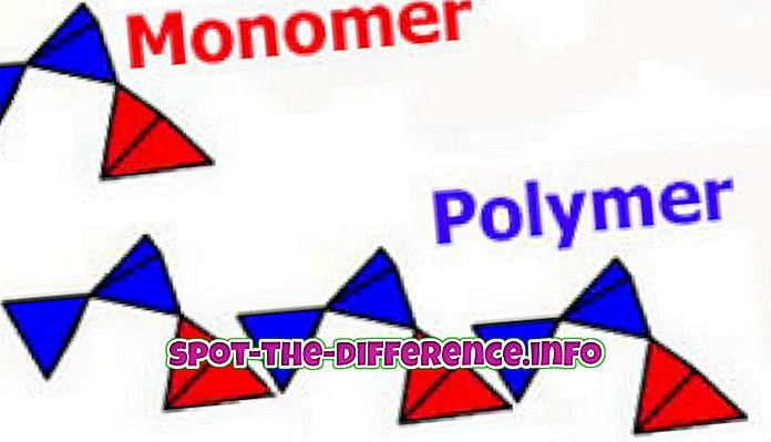 Razlika između plastike i polimera