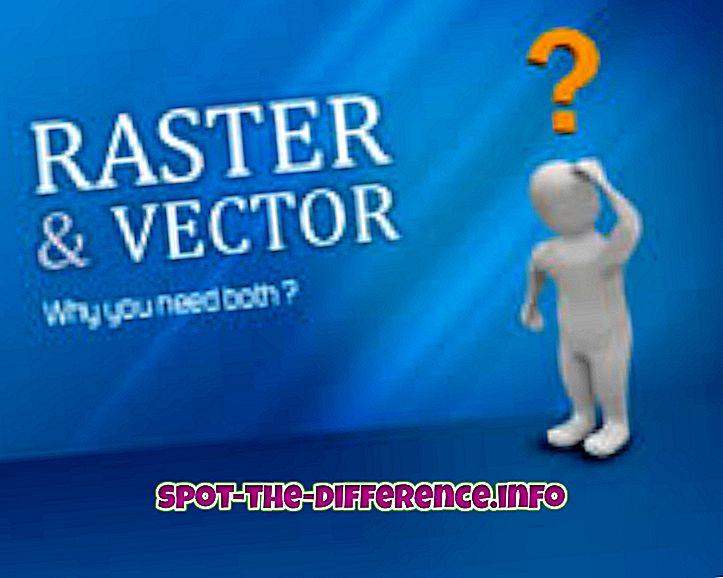 Rasterin ja vektorin välinen ero