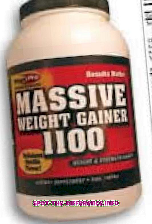 Differenza tra Weight Gainer e Muscle Gainer