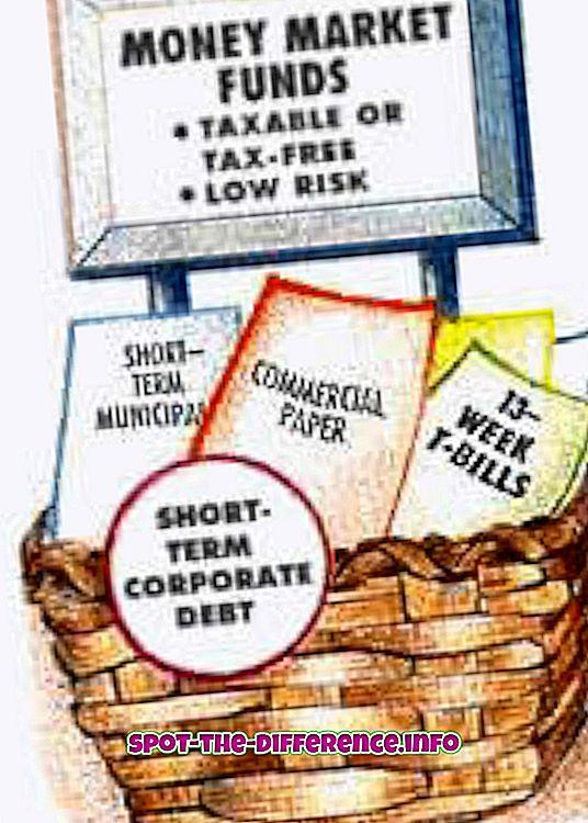Rozdíl mezi peněžním a kapitálovým trhem
