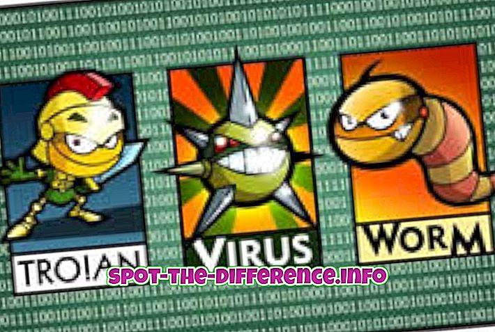 tautas salīdzinājumi: Starpība starp ļaunprātīgu programmatūru un spiegprogrammatūru