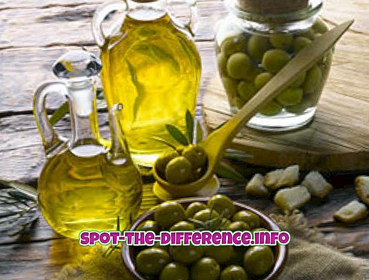 Unterschied zwischen Olivenöl und Rapsöl