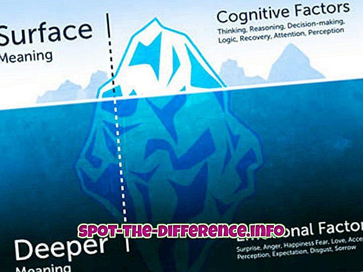 comparaisons populaires: Différence entre sens et définition