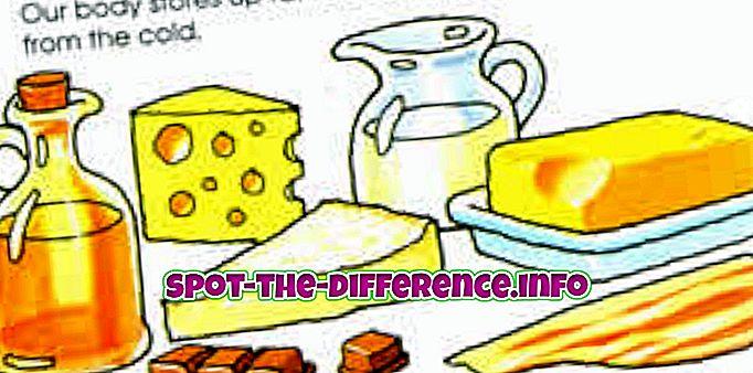 confronti popolari: Differenza tra grassi e oli