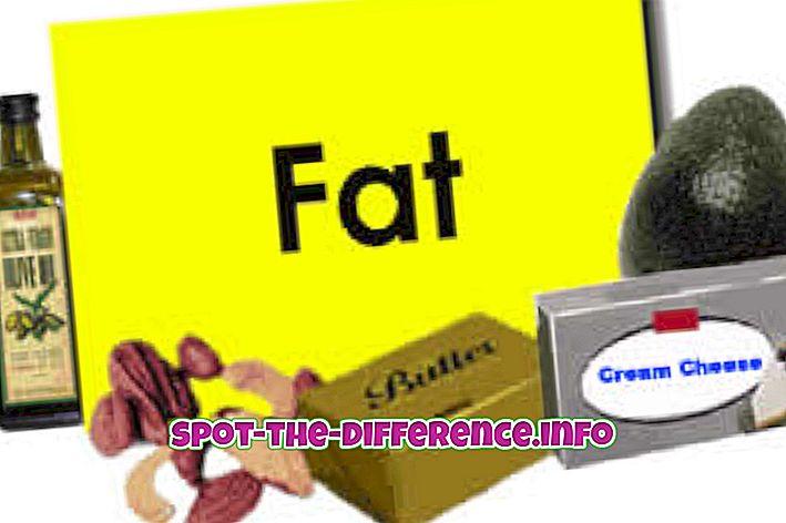 populaarsed võrdlused: Rasvade ja kolesterooli erinevus