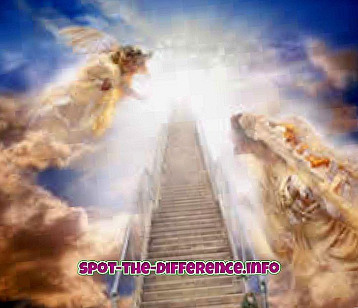populární srovnání: Rozdíl mezi nebem a rájem